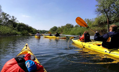 Zemun War Island Kayak Tour